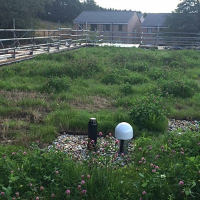 Sundolitt XPS insulating a green roof