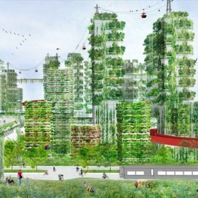 China's vertical forest