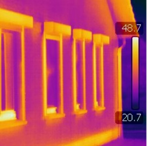 FLIR Thermal and Visuals