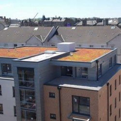 Type S roofing membrane and Type SGmA single ply membrane systems