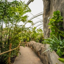 Monsoon Forest has used Gilberts' ventilation solution to replicate a tropical rainforest