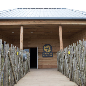 The new Gibbon Forest at Twycross Zoo