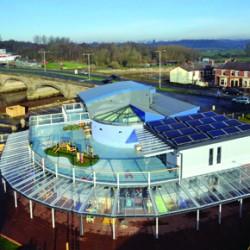 protan ashbridge nursery
