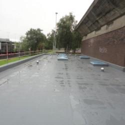 protan roof