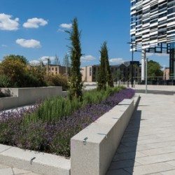 EcoPave textured paving at Manchester Met's Birley campus