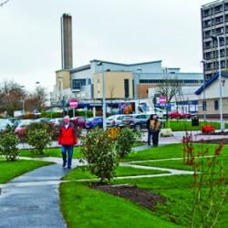 Gartnavel Hospital grounds, work in progress