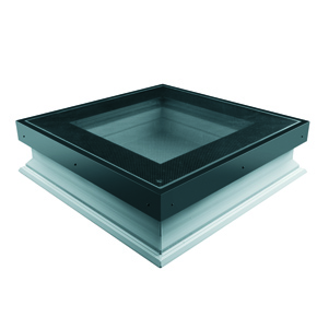 DXW flat roof window