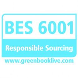 BES 6001