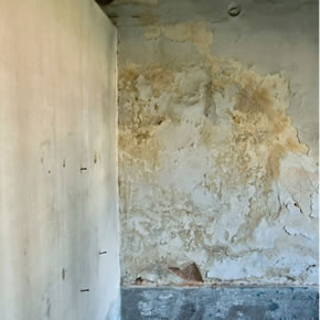Untreated mould