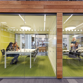 Biophilic benefits within the education sector