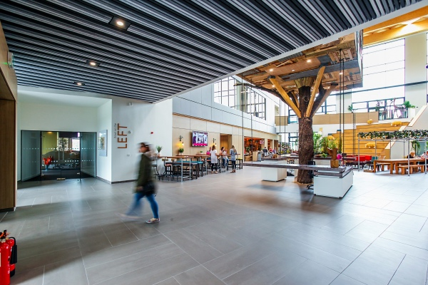 Hunter Douglas Architect@Work felt ceiling system